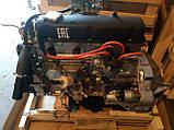 Двигун ГАЗЕЛЬ, СОБОЛЬ, УМЗ-4215 (карбюраторний) (пр-во УМЗ), фото 5