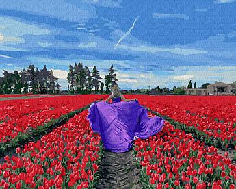 Картина за номерами В полі тюльпанів 40 х 50 см (BK-GX39316)