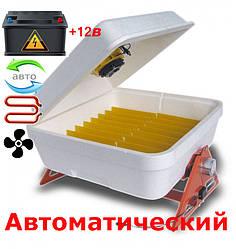 Инкубатор автоматический с резервным питанием Веселое семейство 12В