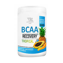Bodyperson Labs BCAA Recovery 500 g