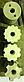 """Сеялка овощная точного высева СТВМ-4 (4-рядная, мотоблочная) """"Ярило"""", фото 5"""