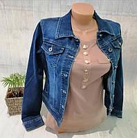 Куртка джинсовая женская, XS,S,M,L,XL pp, № 174198