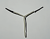 Эротические жемчужные трусики-стринги, фото 5