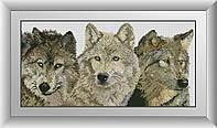 Алмазная мозаика Три волка Dream Art 30462 33x68см 35 цветов, квадр.стразы, полная зашивка. Набор алмазной, фото 1