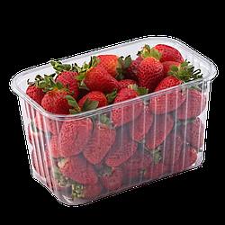 Пластиковый судок для упаковки ягод 1 кг ПЭТ