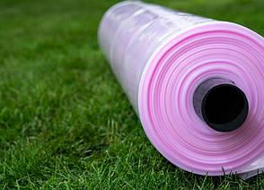 Пленка тепличная (розовая), 150 мкм 6 м x 50 м. УФ- 36 Месяца., фото 2