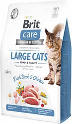 Сухой корм  Brit Care Cat GF Large cats Power & Vitality для крупных пород (утка/курица)