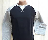 Реглан, світшот, батник чоловічий темно-синій, світло-сірий розмір 48