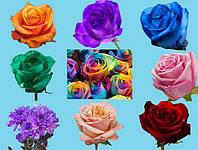 Фарба для зрізаних квітів (Польша)