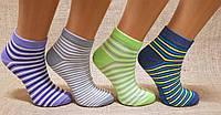 Жіночі шкарпетки середні стрейчеві з бавовни комп'ютерні Style Luxe КЛ KJ kj04