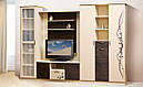 Шафа у вітальню з ДСП/МДФ 3Д Сакура Світ Меблів, фото 3