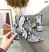Женские кожаные  демисезонные ботинки на мини каблуке 37,38 р серый питон, фото 1