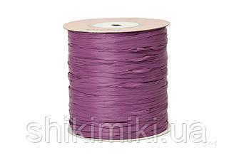 Рафия ISPIE, цвет Grape