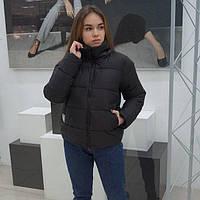 Короткая демисезонная черная женская куртка