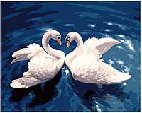 Картина по номерам Лебединый танец, размер 50*40 см, зарисовка полная, на подрамнике