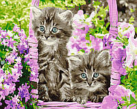 Картина по номерам Котята в корзинке, размер 50*40 см, зарисовка полная, на подрамнике