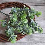 Зелена гілка з бутонами - 40 грн (5 гілочок), фото 3