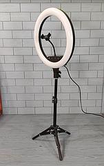 Кольцевая LED лампа диаметром 36см со штативом 1м, пультом, креплением для телефона Лампа кольцевая Led AL-360