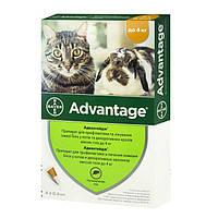 Капли Bayer «Advantage» (Адвантейдж) до 4 кг, 1 пипетка (от внешних паразитов) для кошек и кроликов