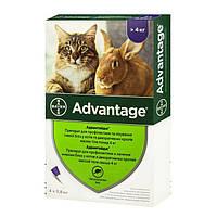 Капли Bayer «Advantage» (Адвантейдж) от 4 до 8 кг, 4 пипетки (от внешних паразитов) для кошек и кроликов