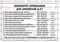 Комплект прокладок Д-21