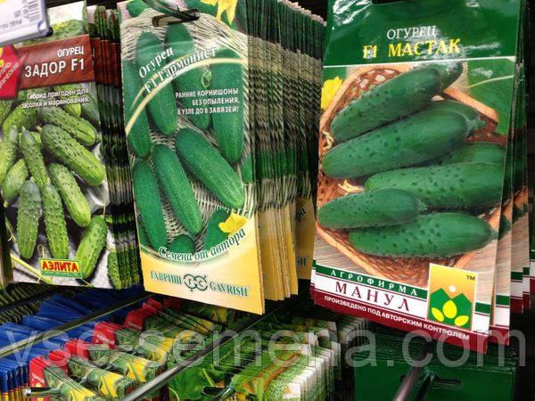 4 самых популярных производителей семян