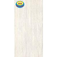 Плитка керамическая напольная Silk 30х60