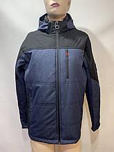 Чоловіча куртка весна/осінь, демісезонна синя