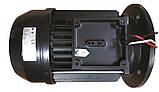 Насос PG STREAMER-R, 22-25 м3/год, 220В, 0,75 кВт, 1HP, фото 4