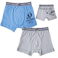 Детские трусы-шорты для мальчика *Марки*  размер 30