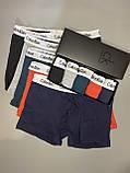 Мужские трусы боксеры в фирменной подарочной упаковке 5 шт. Трусы транки боксеры шорты мужские 8, фото 2