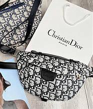 Сумка Dior Bumbag Monogram Grey