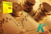 Управление корпоративными финансами, редакция 2.0 для Технологической платформы 8.1