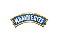 Краска 3 в 1 Hammerite (Хамерайт)
