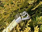 Часы водонепроницаемые и противоударные для занятия спортом и службе в армии., фото 6