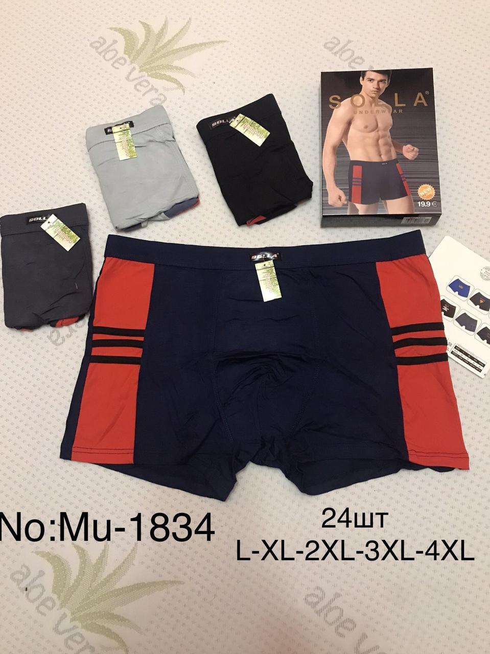 Чоловічі боксери Р. р XL-4XL