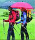 Мужской удобный механический зонт-трость EuroSCHIRM Swing Handsfree W2H69050/SU17745 синий, фото 9