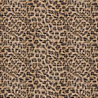 Коврик аквамат в ванную 65см Леопард
