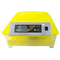Инкубатор автоматический HHD 48 яиц (220v) (1)