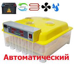 Инкубатор автоматический MS 56
