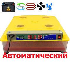 Инкубатор автоматический MS 63