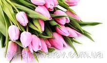 Віддушка Тюльпани США 50 грам