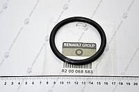 Кольцо заслонки дроссельной уплотнительное (8200068583) Renault