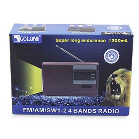 Радіо RX 6031 usb charge 18650