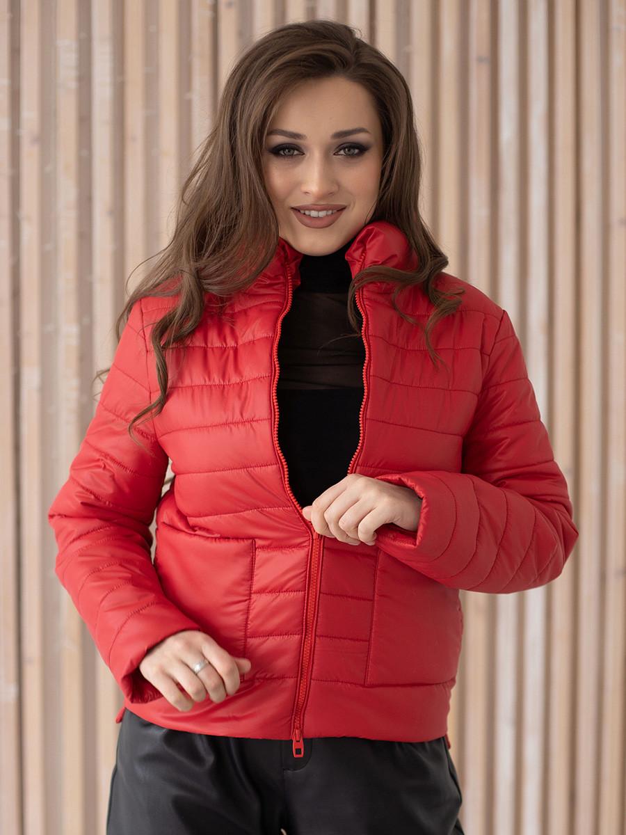 Куртка женская весна ZSK150 красный