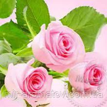 Віддушка Свіжозрізані троянди США 50 грам