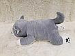 Іграшка-подушка Собачка трансформер 3 в 1 з пледом (ковдрою) всередині, 3 кольори, фото 2