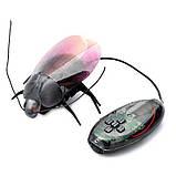 Тварини жук люмінісцентний 775 (930308), фото 6