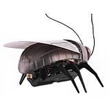 Тварини жук люмінісцентний 775 (930308), фото 8