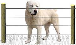 Электропастух Corral B170 для собак и котов (комплект на 125 м в 4 линии)